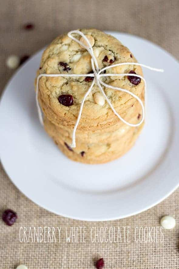 Cranberry White Chocolate Chip Cookies - Cookie Dough and Oven Mitt