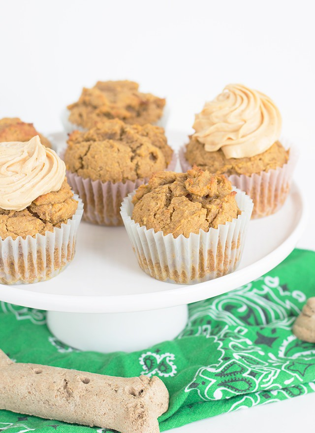 Peanut Butter Pumpkin Pupcakes with Cream Cheese Frosting