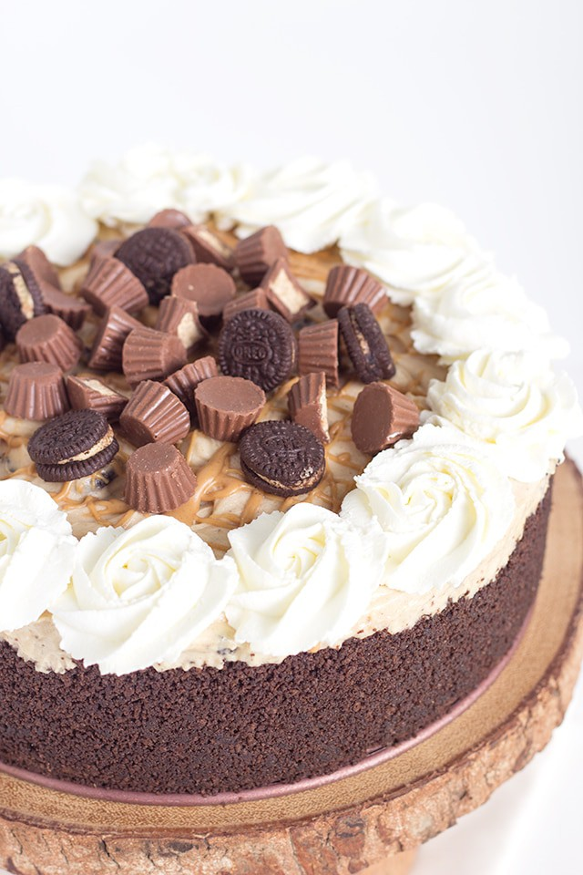 No Bake Reese's Peanut Butter Oreo Cheesecake - delicious chocolate graham cracker crust with a no bake peanut butter cheesecake filling and bits of Reese's Oreos throughout it. This is one of my favorite desserts!