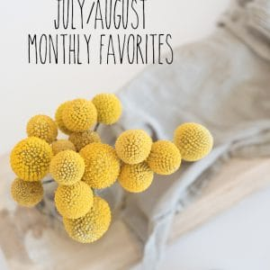 July & August Monthly Favorites