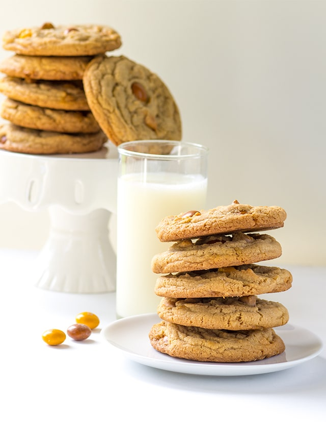Butterscotch Cookies - Chewy cookies loaded with butterscotch chips and butterscotch m&ms.